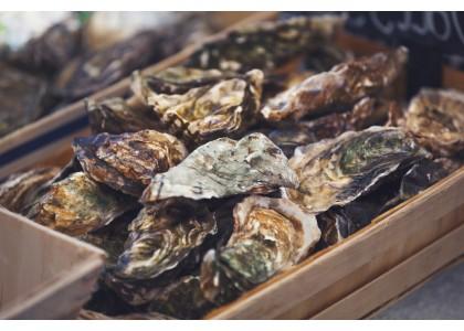 Le recyclage de vos coquilles d'huîtres
